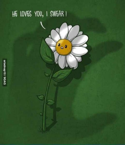 Topvicc: szeret