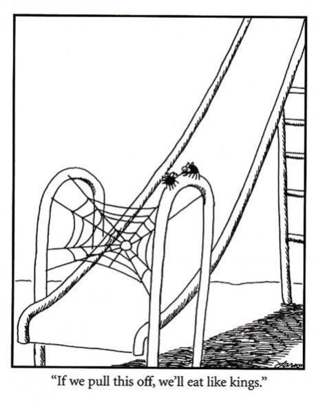 Topvicc: pókos