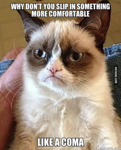 Topvicc: Grumpy