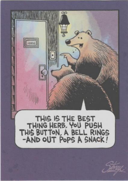 Topvicc: medvevacsi