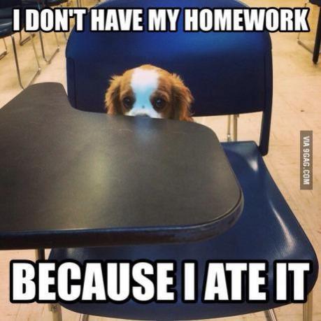 Topvicc: homework