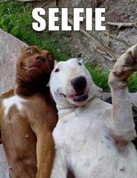 Topvicc: selfie
