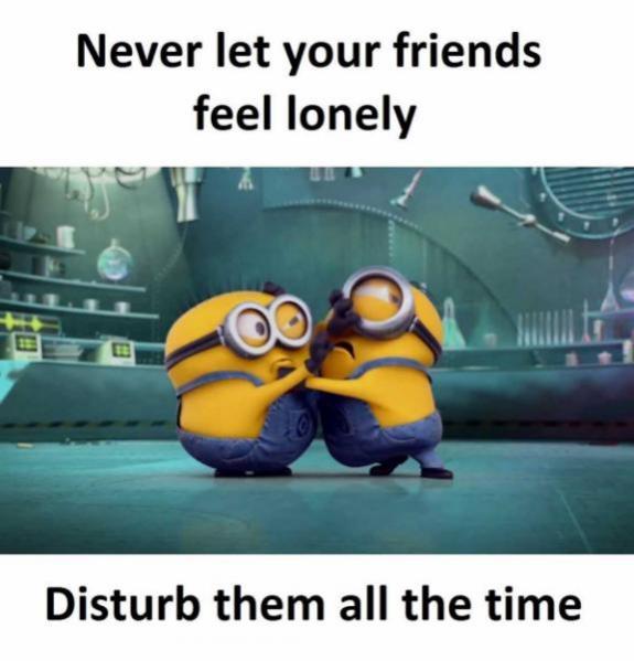 Topvicc: friend