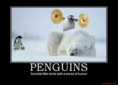Topvicc: penguin