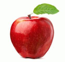 apple jelentese magyarul
