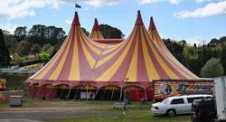 circus jelentese magyarul