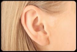 ear jelentese magyarul