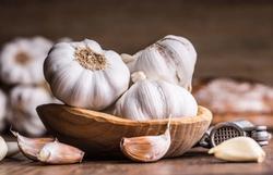 garlic jelentese magyarul