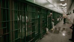 jail jelentese magyarul