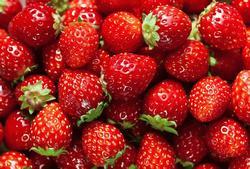strawberries jelentese magyarul