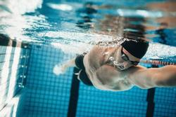 swimming jelentese magyarul