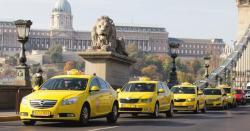 taxied jelentese magyarul