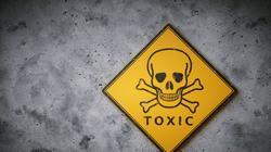 a toxin mit jelent