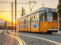 tram jelentese magyarul