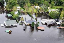 árvíz angolul