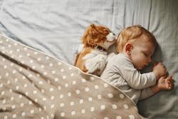 alvást pótol angolul