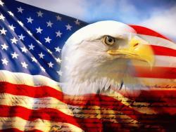amerikai szalonka angolul