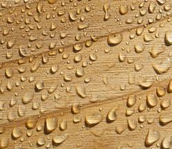 nedvesség angolul