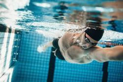 úszás angolul
