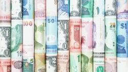 valuta angolul
